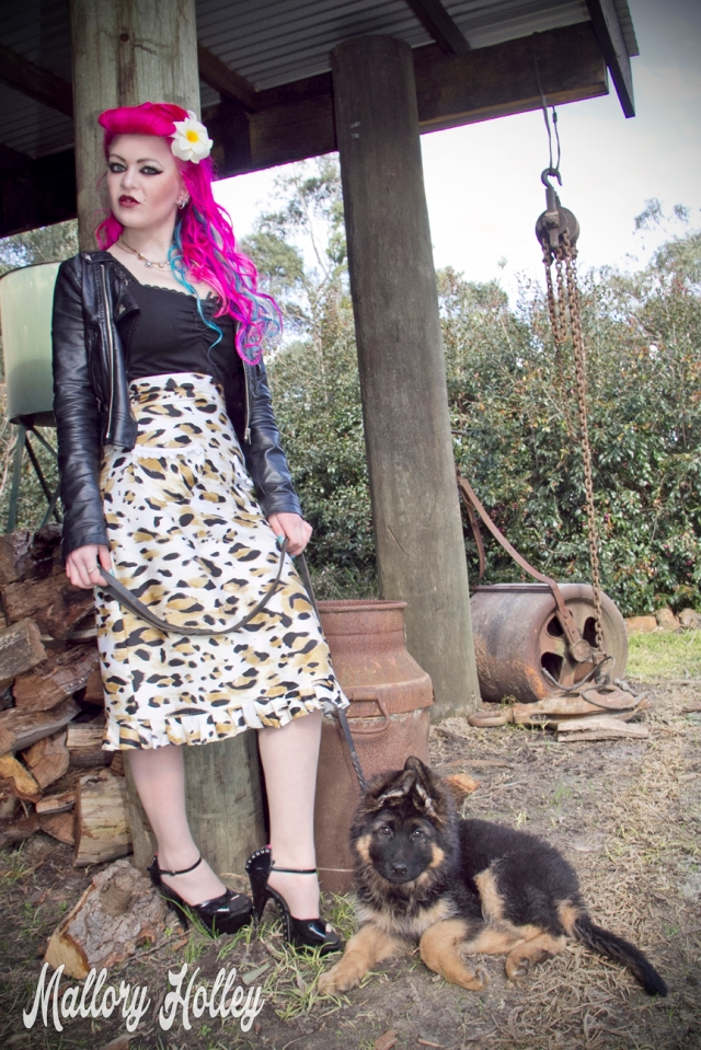 Dress Me Gorgeous Pinup Dress Review German Shepherd Puppy_0186.