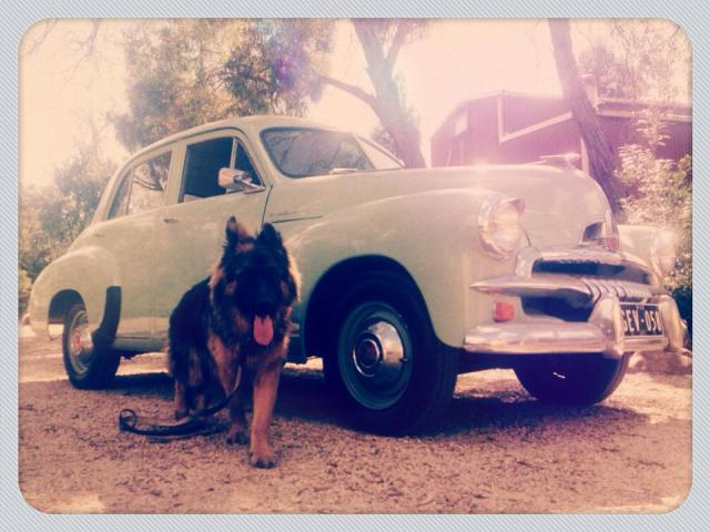 My FJ Holden, new studio and Dodge.