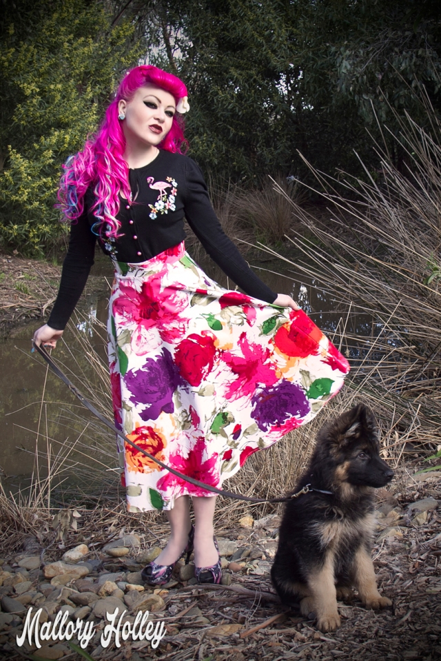 Printed pinup skirt by Dress Me Gorgeous and German Shepherd Puppy_0374