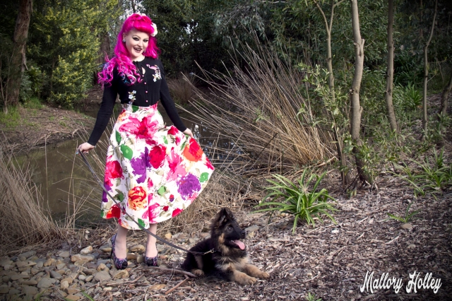 Printed pinup skirt by Dress Me Gorgeous and German Shepherd Puppy_0380