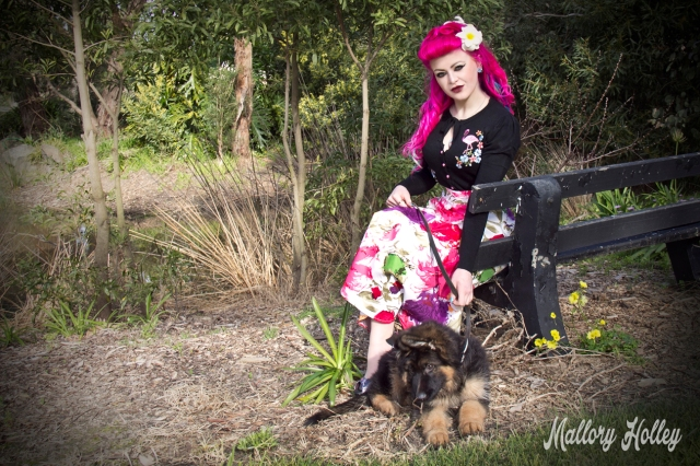 Printed pinup skirt by Dress Me Gorgeous and German Shepherd Puppy_0402