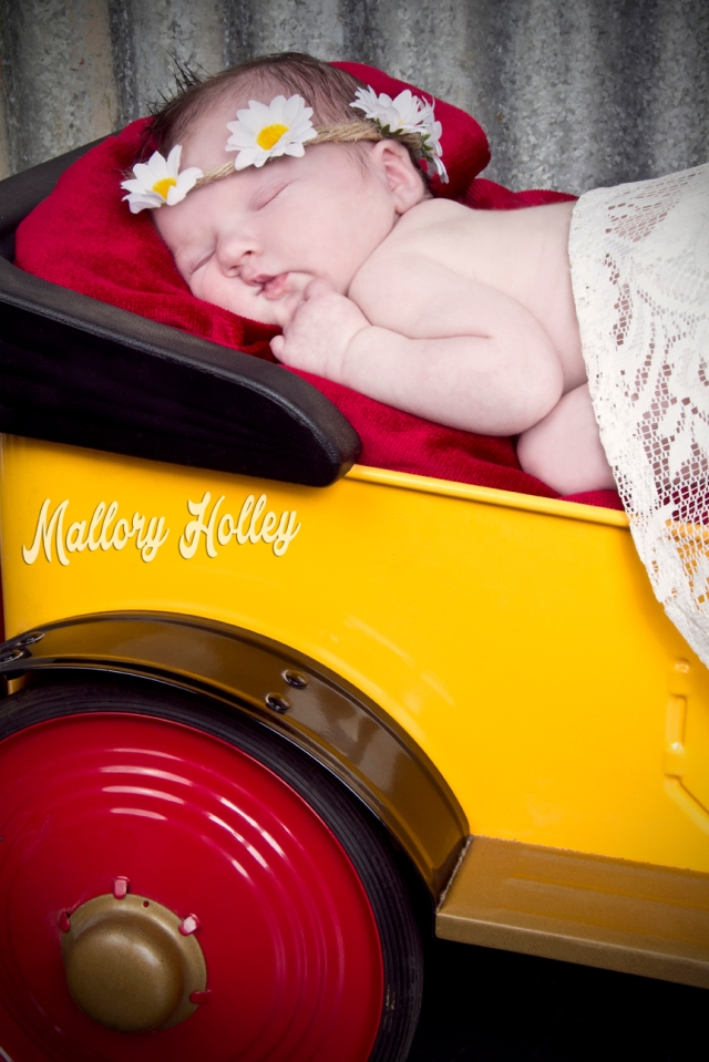 Mallory Holley Studios_02_WebRes