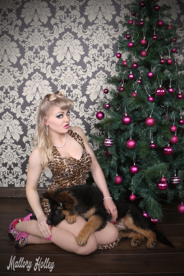 christmas-pinup-and-german-shepherd-puppy-photoshoot-mallory-and-cadillac