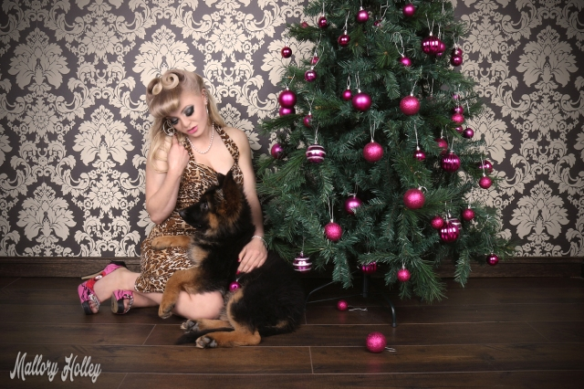 christmas-pinup-and-german-shepherd-puppy-photoshoot