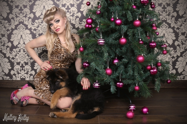 christmas-pinup-and-gsd-puppy-photoshoot-cadillac-and-mallory