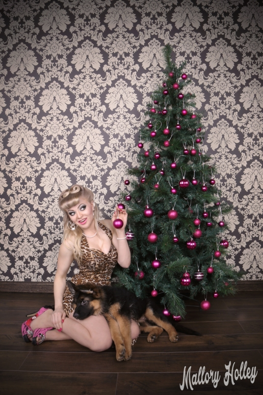 christmas-pinup-and-gsd-puppy-photoshoot-cadillac-mallory2