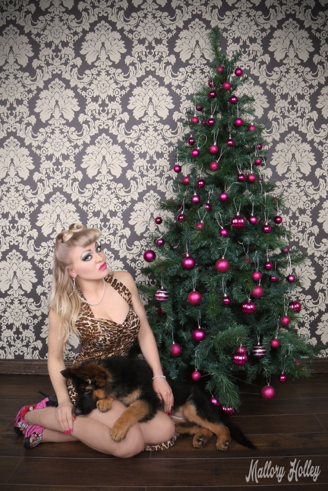 christmas-pinup-and-gsd-puppy-photoshoot-mallory-and-cadillac