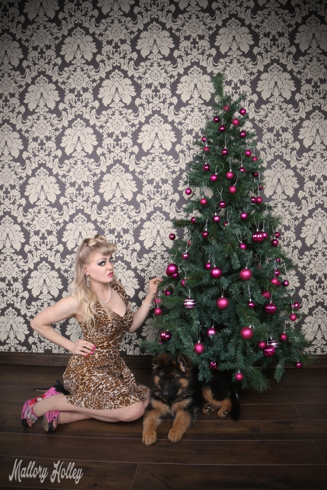 christmas-pinup-puppy-photoshoot-cadillac-mallory
