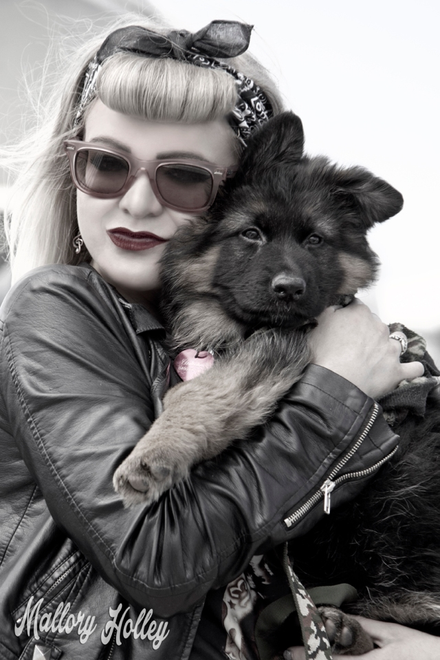 cuddles-with-cadillac-my-german-shepherd-puppy