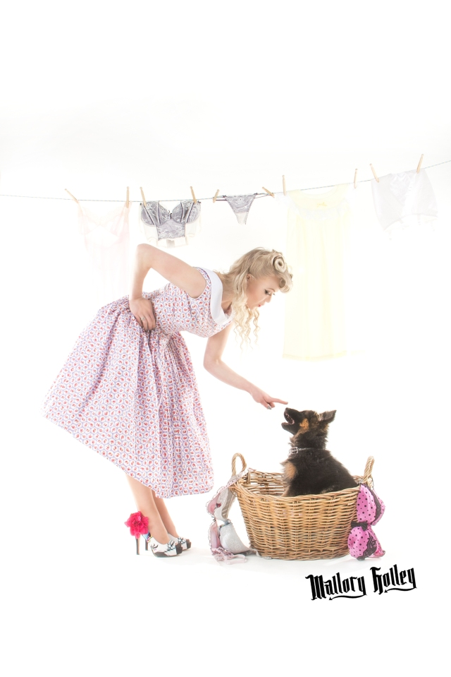 Pinup & Puppy in Washing Basket